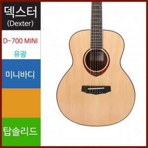 Dexter 덱스터 D-700 MINI (Top Solid)