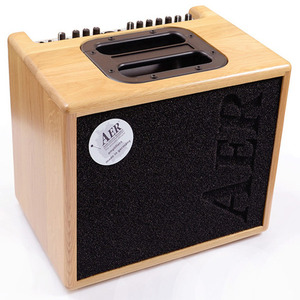 AER 어쿠스틱앰프 Compact 60 Solid wood